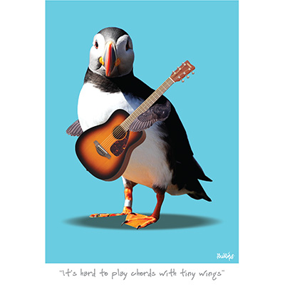 It's hard to play chords with tiny wings
