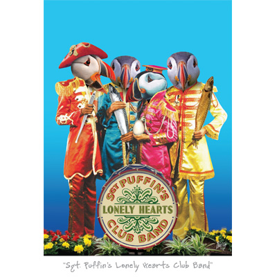 Sgt Puffin's Lonely Hearts Club Band